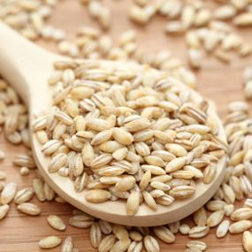 BARLEY may be latest superfood as it 'helps prevent obesity, diabetes and …